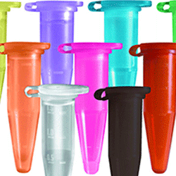 Beakers, tubes & containers